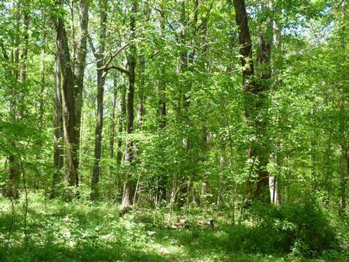 Photo of 2585 Spring Creek Rd, Estill Springs, TN 37330 (MLS # 2165550)