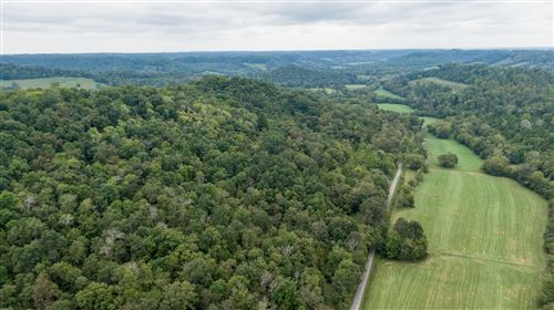 Photo of 0 Young Hollow Road, Pulaski, TN 38478 (MLS # 2153571)