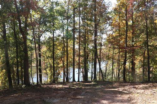 Photo of 48 Amazing Place, Summertown, TN 38483 (MLS # 2201586)