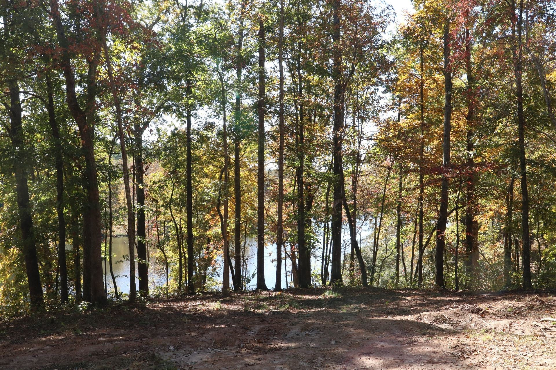 Photo of 48 Amazing Place, Summertown, TN 38483 (MLS # 2201586)