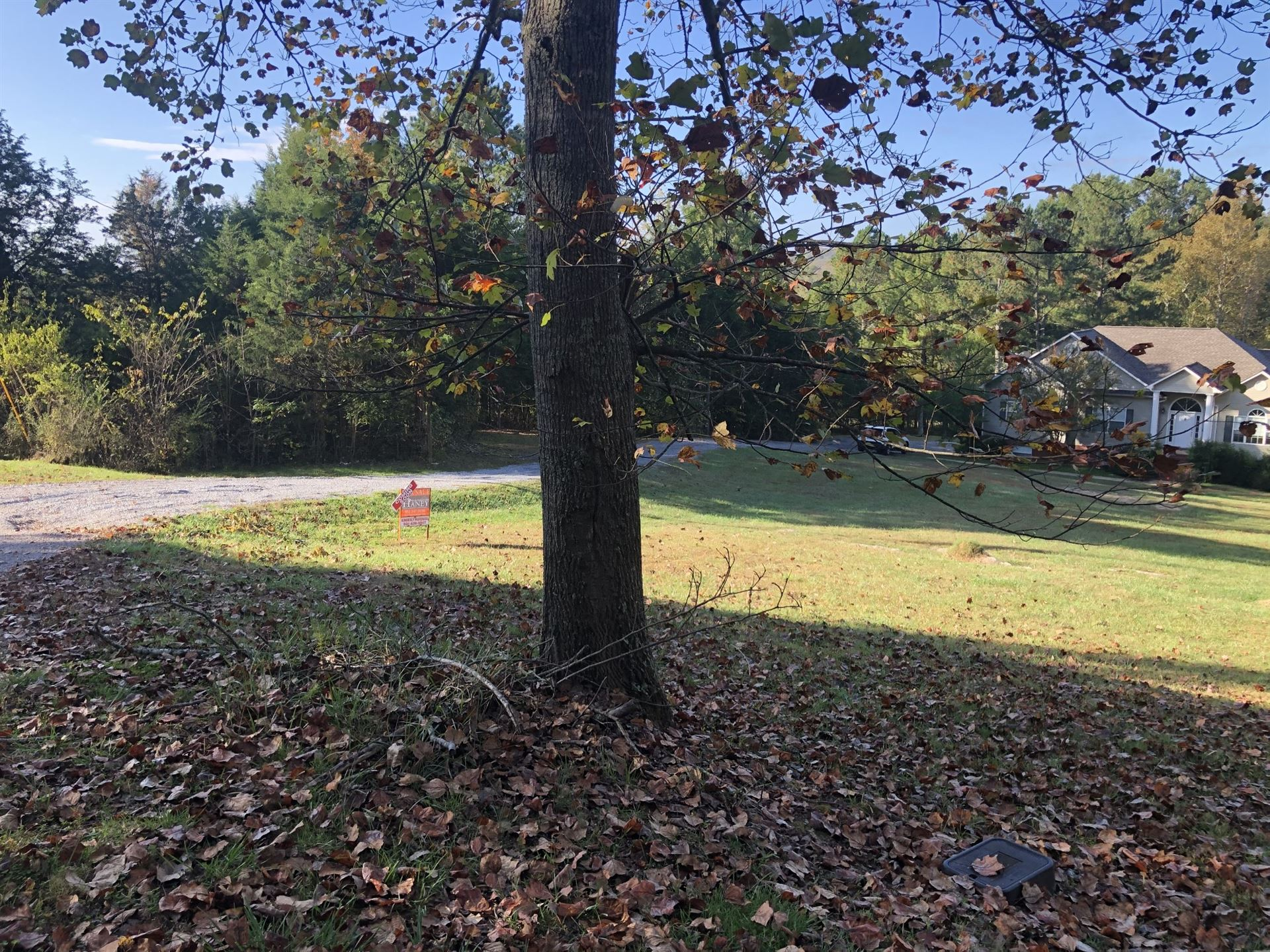 Photo of 161 Cobb Ln, Pulaski, TN 38478 (MLS # 2200596)