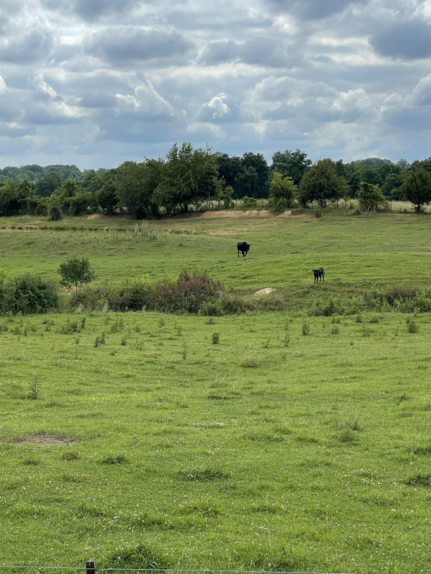 Photo of 0 Ash Hill Rd, Spring Hill, TN 37174 (MLS # 2266601)