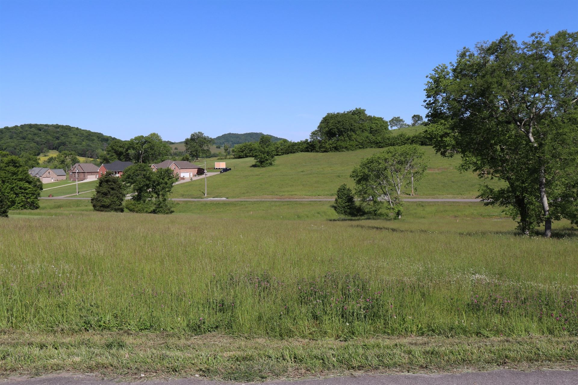 Photo of 0 Bridle Path Ln, Hartsville, TN 37074 (MLS # 2253605)