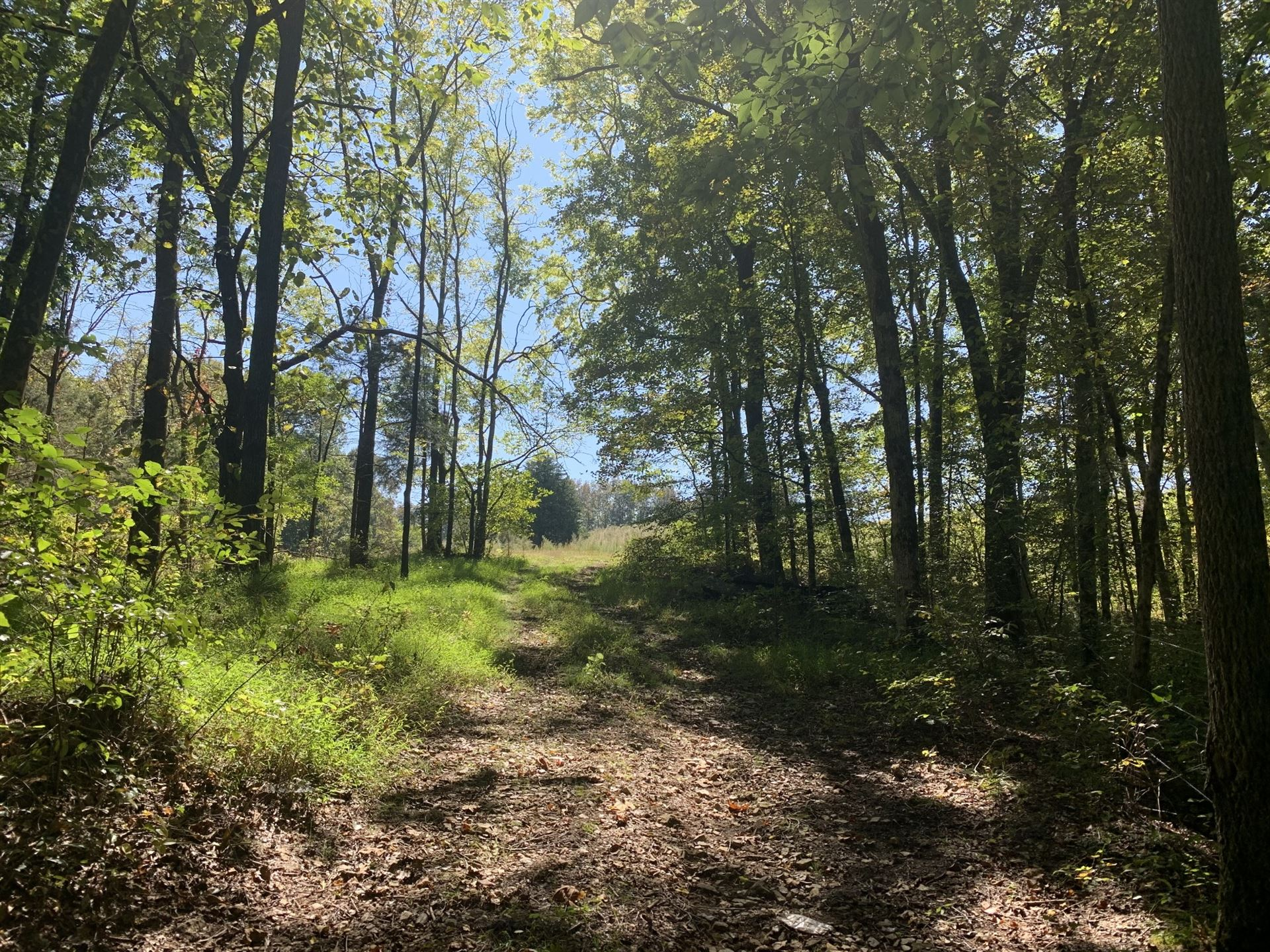 Photo of 0 Couch Branch Rd, Westpoint, TN 38486 (MLS # 2196617)