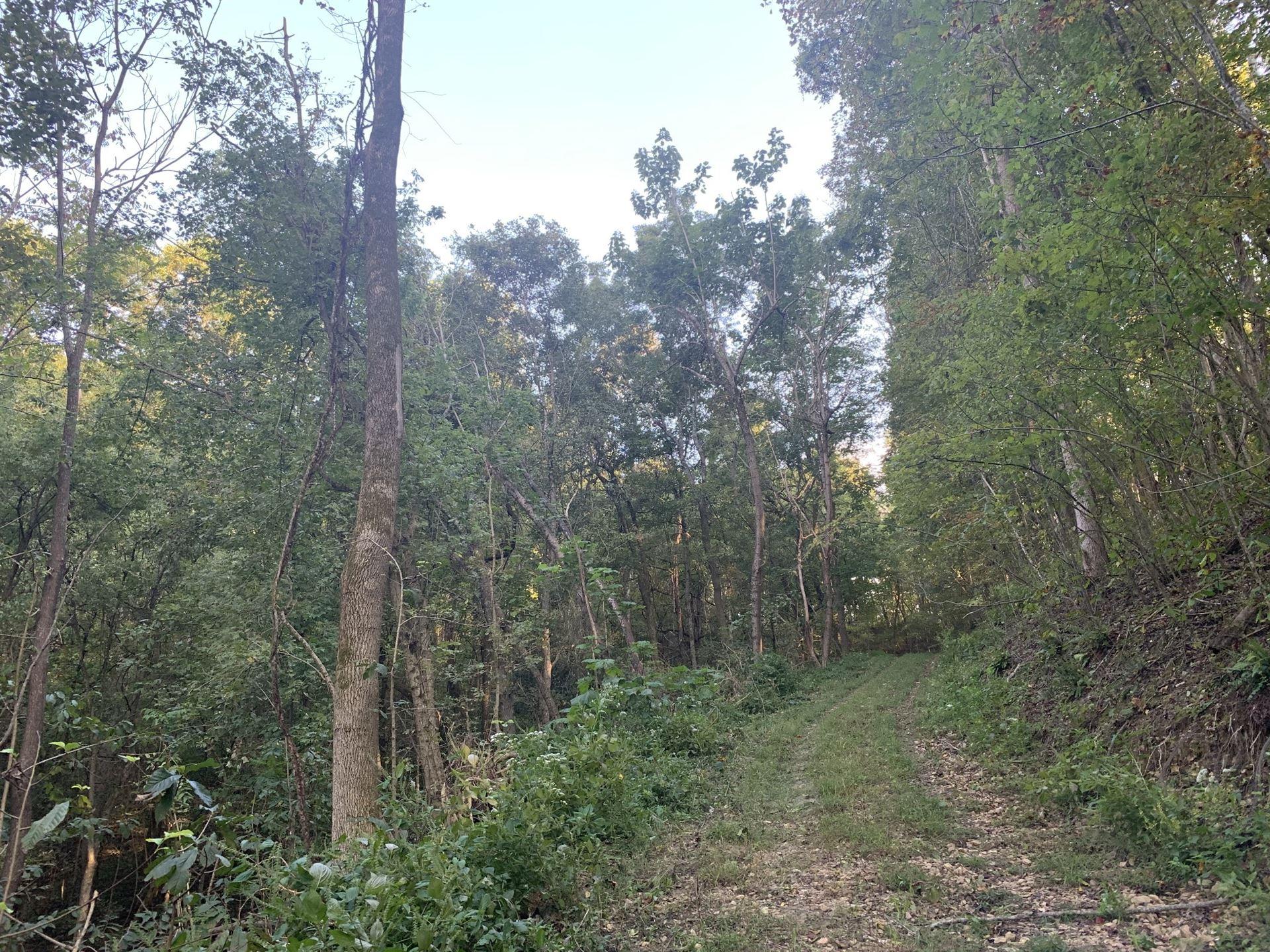 Photo of 0 Bethel Rd, Prospect, TN 38477 (MLS # 2196642)