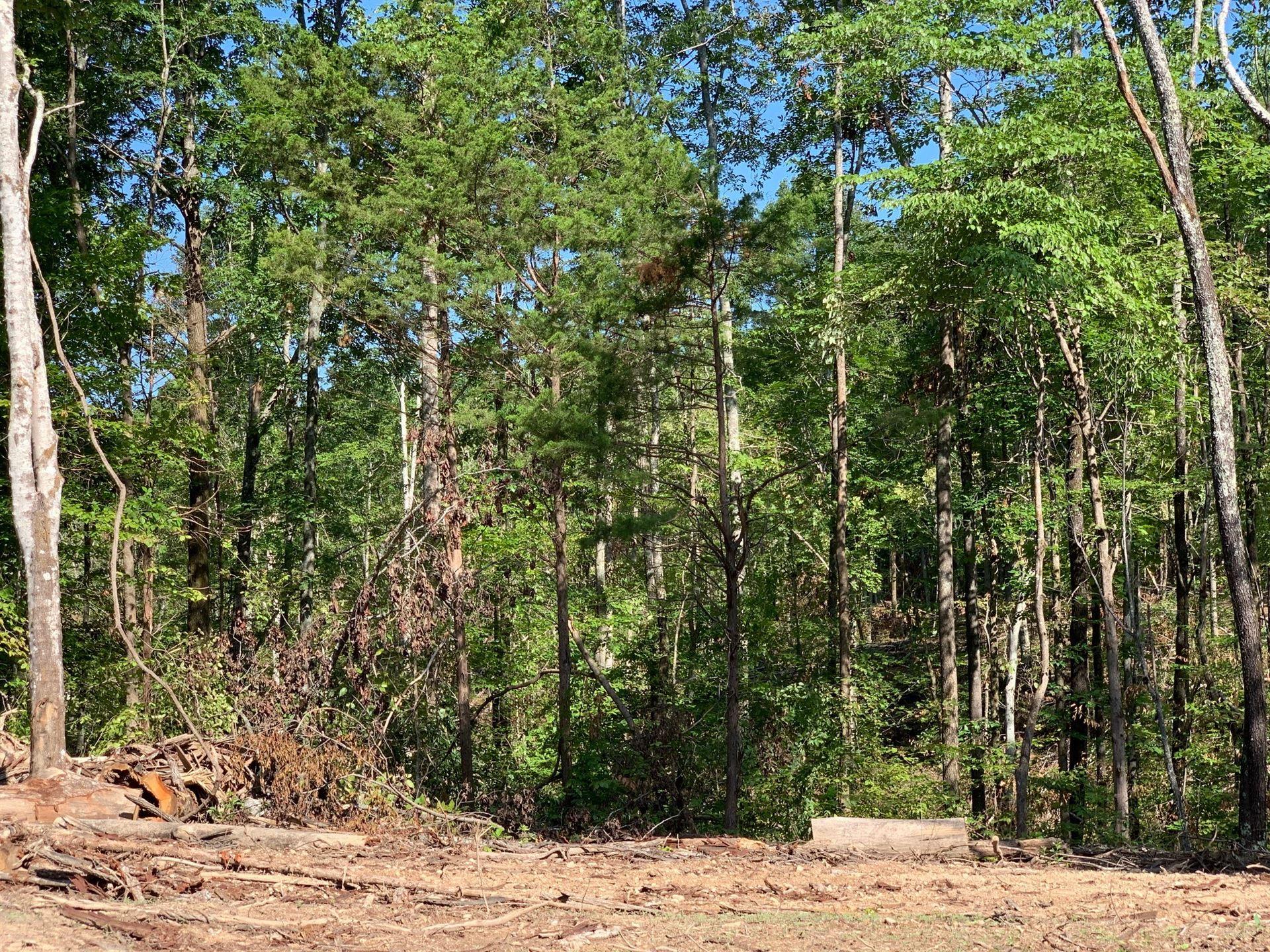 Photo of 3 Black Road, Prospect, TN 38477 (MLS # 2168648)