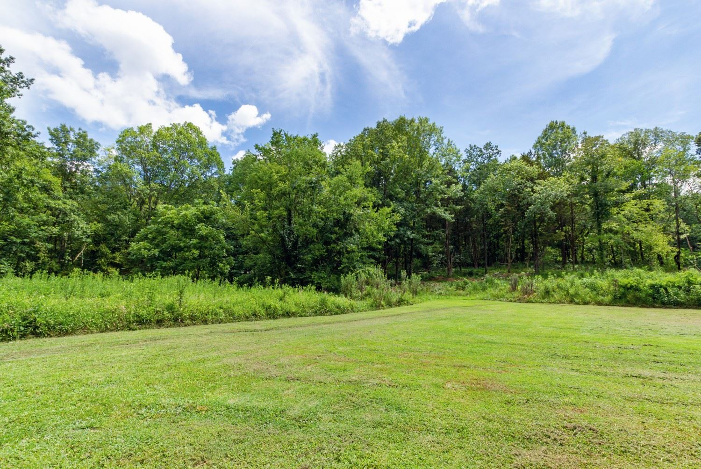 Photo of 2822 Rock Hill Ln, Nolensville, TN 37135 (MLS # 2190663)