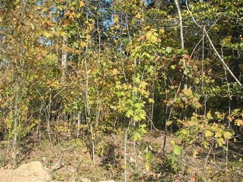Photo of 1 Red Bud Rd, Dover, TN 37058 (MLS # 2178665)