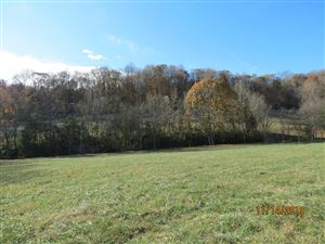 Photo of 13 Johnson Hollow Rd, Watertown, TN 37184 (MLS # 2099668)