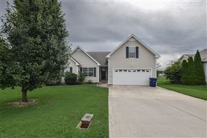 Photo of 1170 Snoopy Dr, Clarksville, TN 37040 (MLS # 2061691)