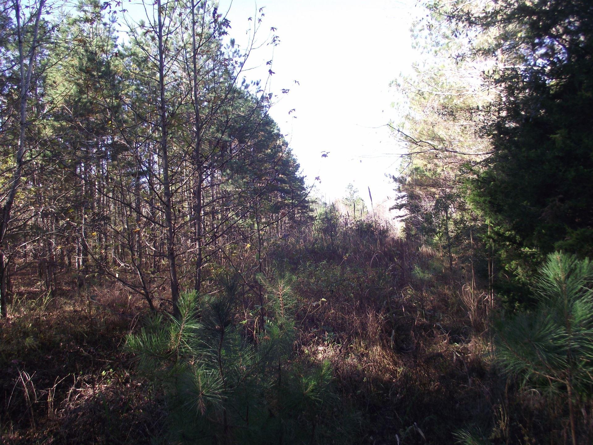 Photo of 0 Bethel Purdy Rd, Bethel Springs, TN 38315 (MLS # 2178702)