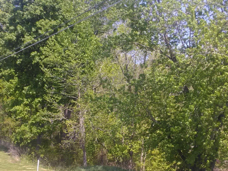 0 Rock Springs Rd, Charlotte, TN 37036 - MLS#: 2247710