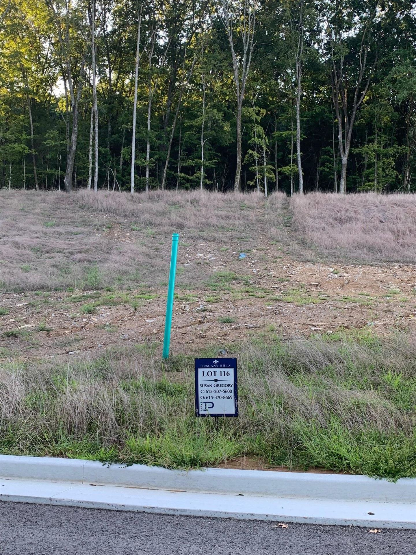 Photo of 1759 Umbria Drive, Lot 116, Brentwood, TN 37027 (MLS # 2076719)