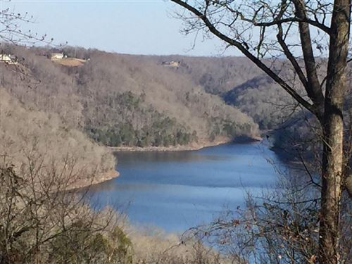 Photo of 5 Lafever Ridge Rd, Silver Point, TN 38582 (MLS # 2222743)