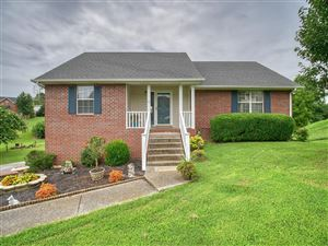 Photo of 1081 Shadowbrook Dr, Greenbrier, TN 37073 (MLS # 2061767)