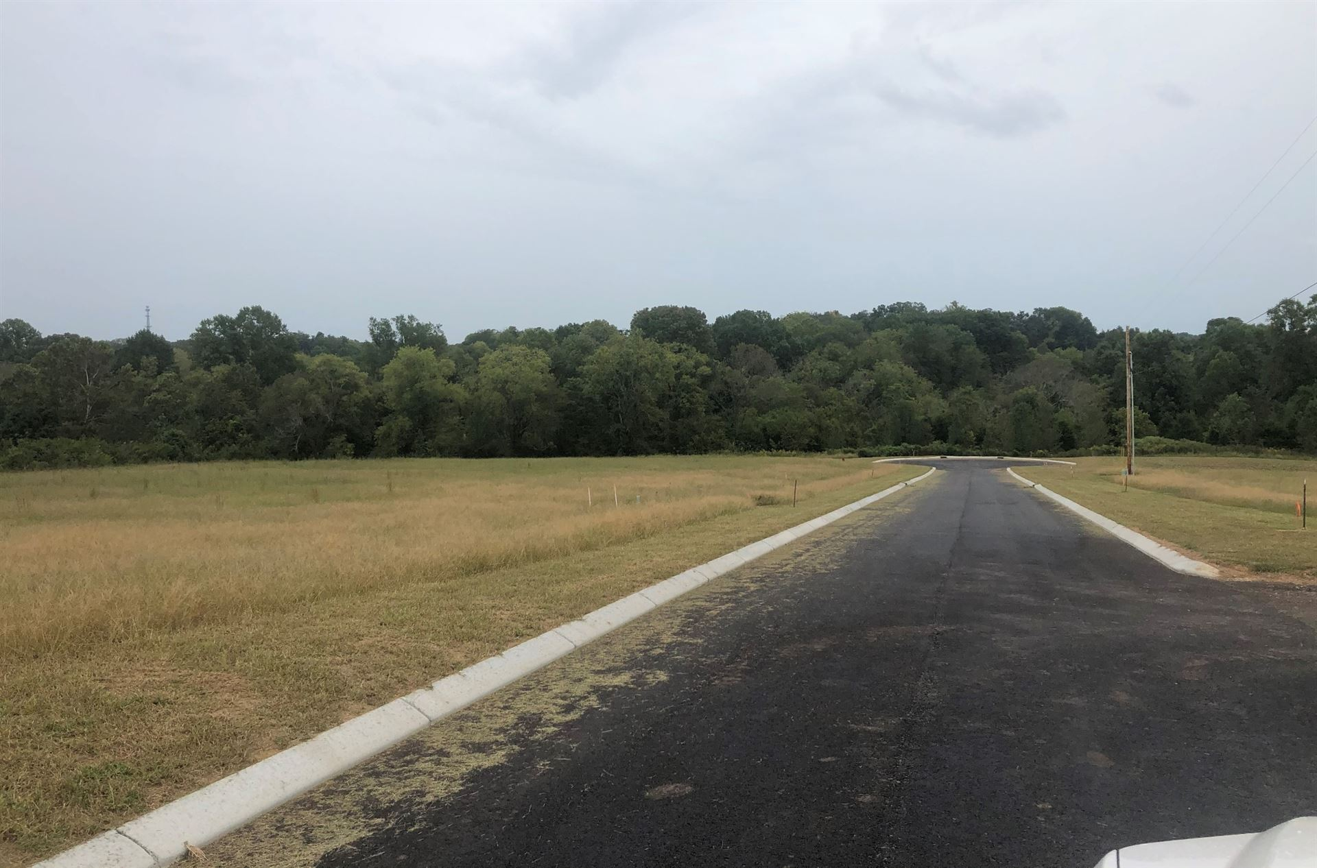 Photo of 3019 Ora Lane, Spring Hill, TN 37174 (MLS # 2200775)