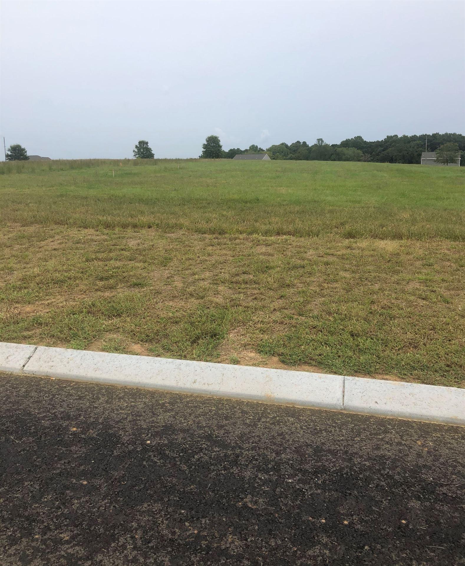 Photo of 3005 Ora Lane, Spring Hill, TN 37174 (MLS # 2200777)