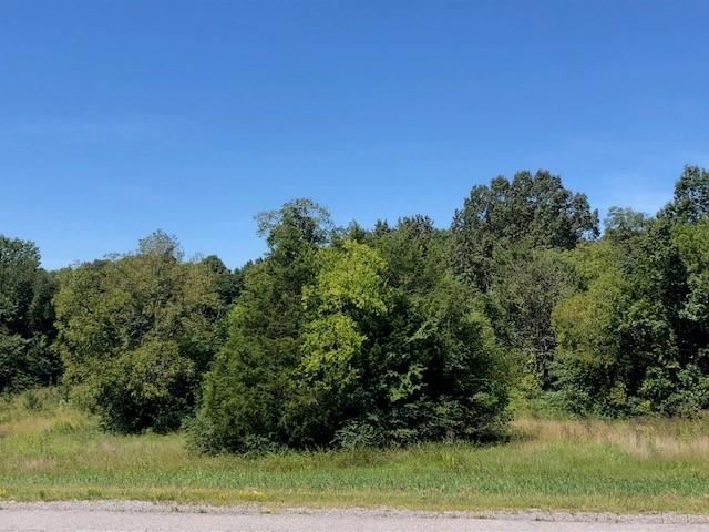 0 Highway 231 North, Shelbyville, TN 37160 - MLS#: 2076778
