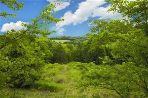 Photo of 4715 Bennett Hollow Rd, Thompsons Station, TN 37179 (MLS # 2013783)
