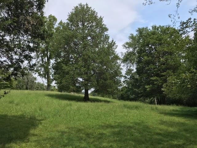 Photo of 0 Red Oak Dr, Brentwood, TN 37027 (MLS # 2184789)