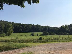 Photo of 1073 Rogers Hollow Rd, Mc Minnville, TN 37110 (MLS # 1952814)