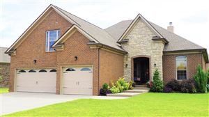 Photo of 6004 Lily Dr, Spring Hill, TN 37174 (MLS # 2050817)