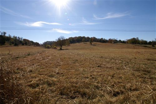 Photo of 1166 Cranford Hollow Rd, Columbia, TN 38401 (MLS # 2111817)