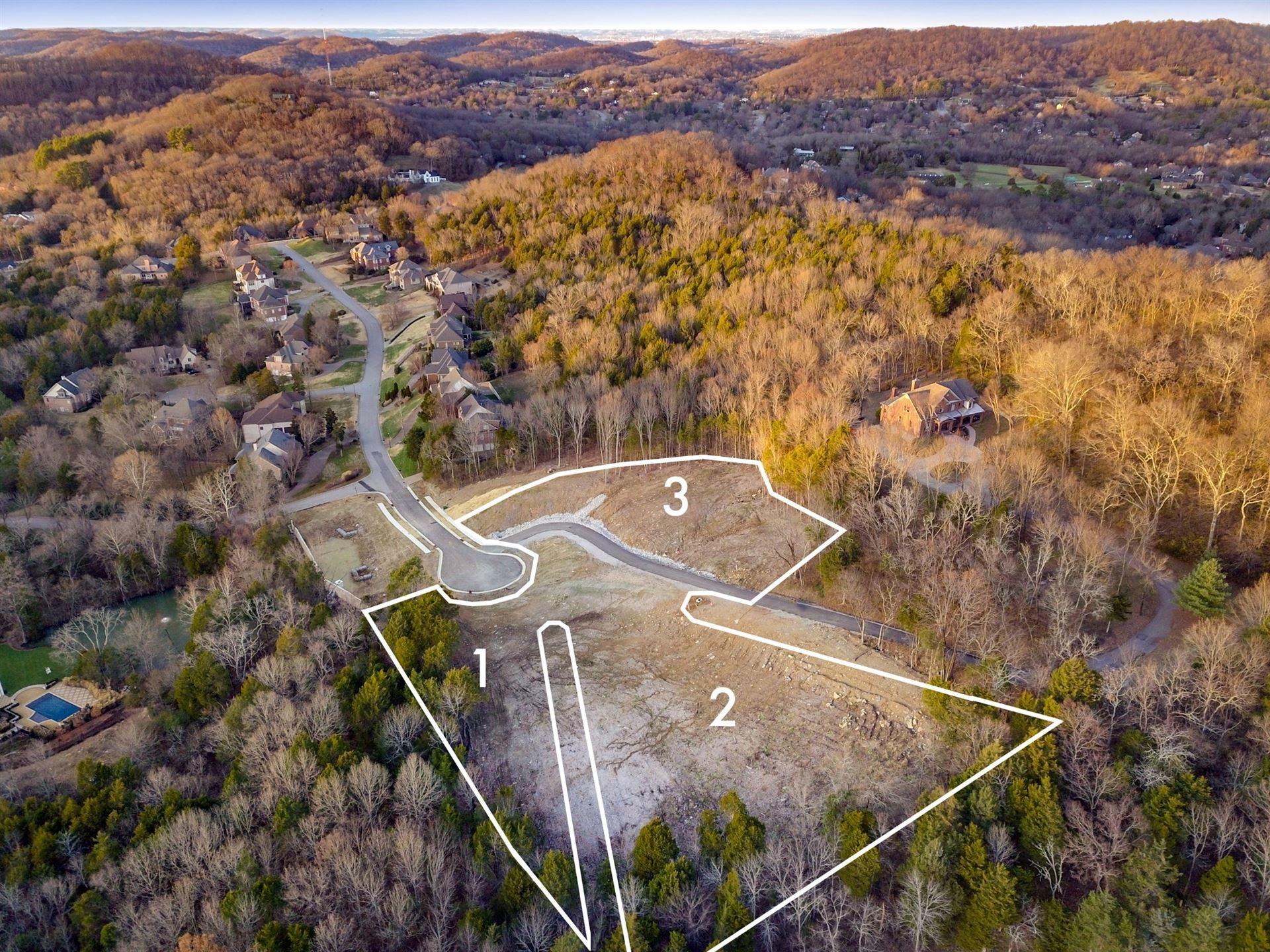Photo of 530 Arden Wood Place, Brentwood, TN 37027 (MLS # 2167830)