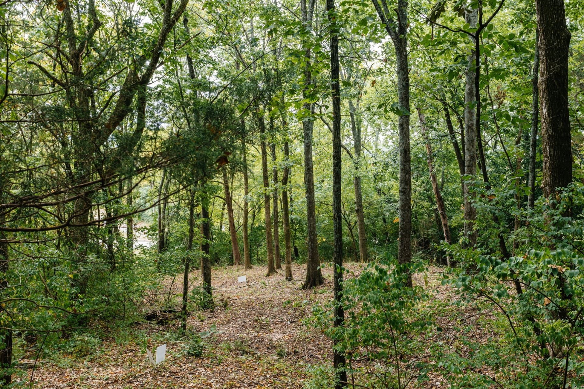 Photo of 1745 Woodsong Dr (Lot #34), Brentwood, TN 37027 (MLS # 2134849)