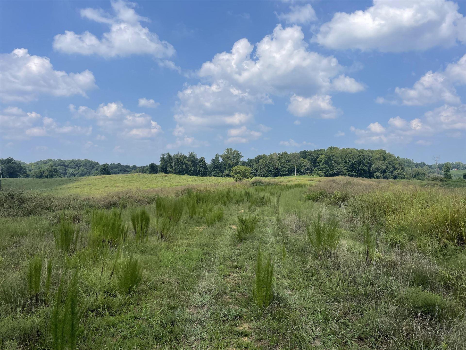 1156 Eagles Nest Rd, Baxter, TN 38544 - MLS#: 2284852