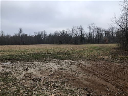 Photo of 2319 Central Curve Rd, Ripley, TN 38063 (MLS # 2225893)