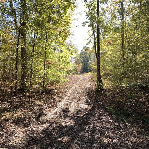 Photo of 0 Deer Haven Rd, Indian Mound, TN 37079 (MLS # 2209911)