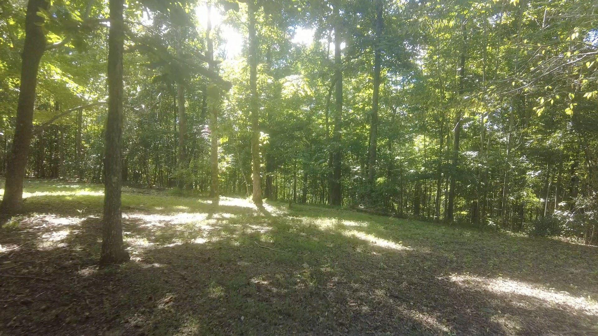 Photo of 832 Williams Hollow Rd, Pulaski, TN 38478 (MLS # 2302921)