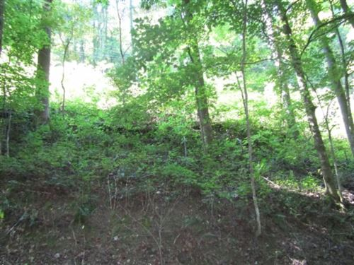 Photo of 1 .17ac Austin Lake Rd, Baxter, TN 38544 (MLS # 2190923)