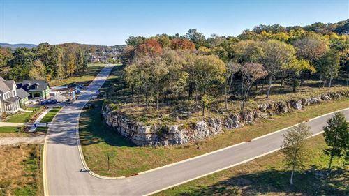 Photo of 8177 Heirloom Blvd (Lot 11002), College Grove, TN 37046 (MLS # 2195928)