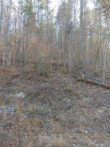 Photo of 142 Claxton Farms Ln, Powell, TN 37849 (MLS # 2225931)