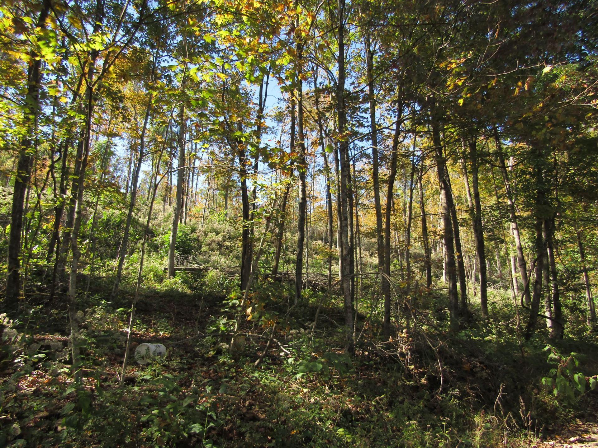 Photo of 0 Walker Ln 18.10 ac, Livingston, TN 38570 (MLS # 2302935)