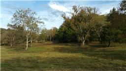 Photo of 3980 Burwood Pl Pvt Dr - Lot 3, Thompsons Station, TN 37179 (MLS # 2036947)