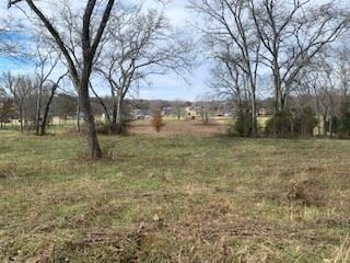 Photo of 515 Brummitt Rd, Castalian Springs, TN 37031 (MLS # 2101952)