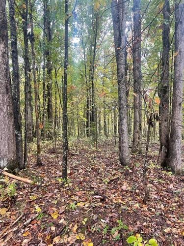 Photo of 0 Cowhorne Hollow, Prospect, TN 38477 (MLS # 2300968)