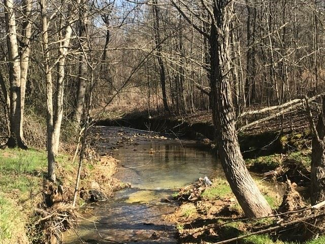 Photo of 0 Suckstem Branch, Lawrenceburg, TN 38464 (MLS # 2138975)