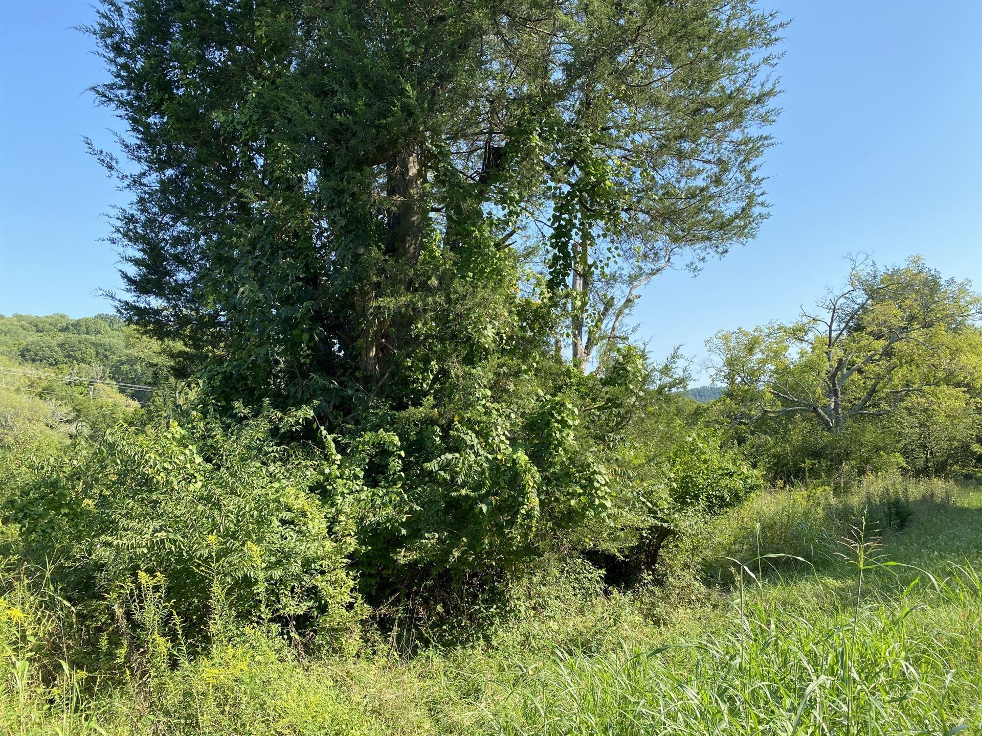 Photo of 3033 McCanless Rd, Nolensville, TN 37135 (MLS # 2187994)