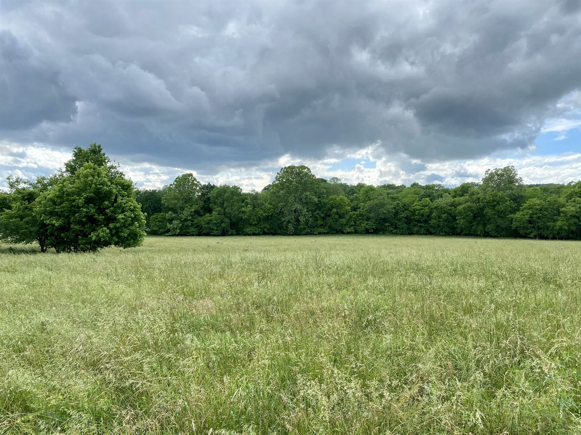 Photo of 0 Cliff Amos Road, Spring Hill, TN 37174 (MLS # 2257998)