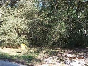 Photo of Yulee, FL 32097 (MLS # 92651)