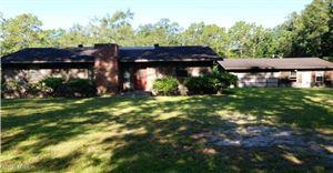 Photo of 438 CATHY TRIPP LN, JACKSONVILLE, FL 32220 (MLS # 1015135)