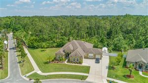 Tiny photo for 1401 COOPERS HAWK WAY, MIDDLEBURG, FL 32068 (MLS # 997387)