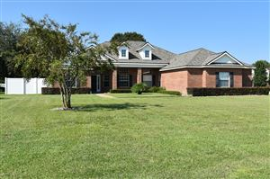 Photo of 9651 RED SQUIRREL LN #Lot No: 24, JACKSONVILLE, FL 32219 (MLS # 1014568)