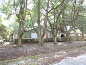 Photo of 3923 DOTTIE RD, JACKSONVILLE, FL 32220 (MLS # 1018601)
