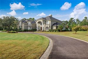 Photo of 9420 COXWELL ESTATES, JACKSONVILLE, FL 32221 (MLS # 1023729)