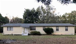 Photo of 4038 AMANDA LN, MIDDLEBURG, FL 32068 (MLS # 1022837)